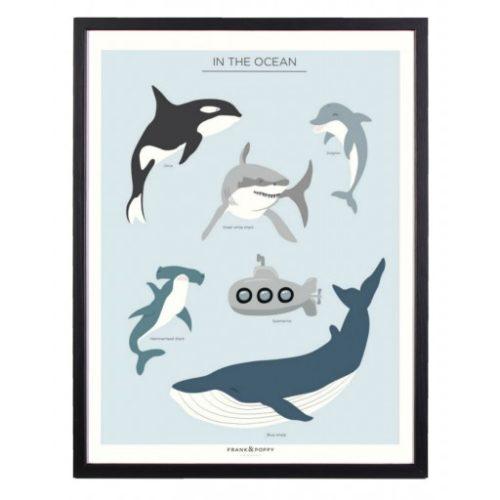 Poster-30x40-Frank-Poppy-In-the-Ocean.jpg