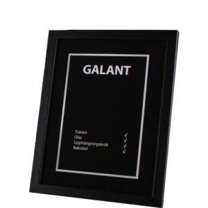galant-traram-Svart-50x70