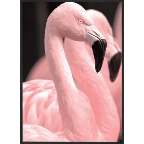 Poster_30x40_Pink_Flamingo_2