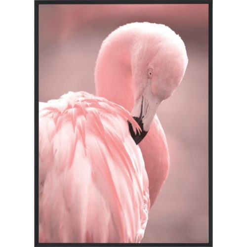 Poster_30x40_Pink_Flamingo_3