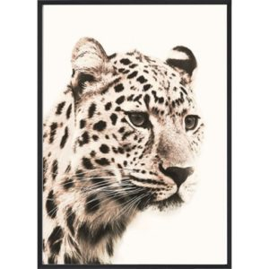 Poster_30x40_African_Leopard_Head