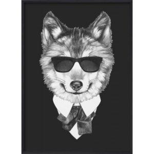 poster-djur-varg_Poster_30x40_Black_Fox