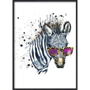poster-grafiskt-zebra-svart-vit-solglas_gon-djur-Poster-50x70