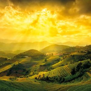 landskape-Poster-91.5x61