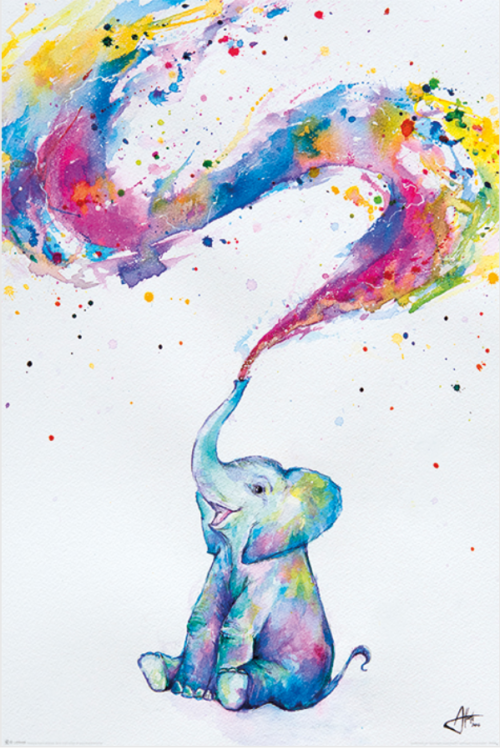 elephant_color-Poster-91.5x61
