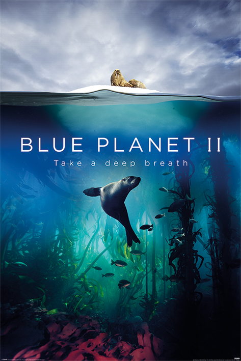 blue_planet-Poster-91.5x61