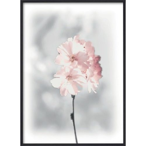 Poster 30x40 Pink Cherry Twig